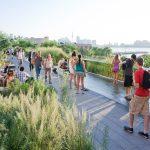 ダイナミックな都市を体感させるNYの空中庭園、ハイラインはなぜこれほど成功したのだろう?